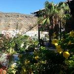Los Guayres