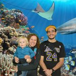 At the Steinhart Aquarium