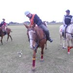 Argentina polo day, a passion!