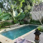 Our private pool at our villa