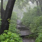 Trek path