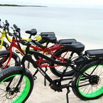 Beach Bum Bikes