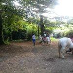 Passeggiata Pony