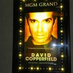 pic of David at the MGM Grand