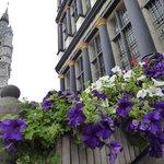 市庁舎アプローチに花が。
