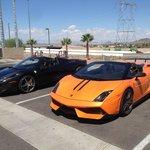 Ferrari and Lamborghini