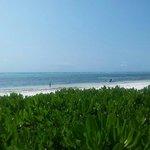 Vista desde su playa privada