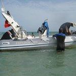 Photo of Dive Center: Blue Dolphin Djerba