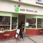 Apple Blossom Cafe, Cowick Street