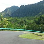 Road in Paradise 1