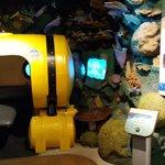reproducción del fondo marino