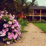 Photo de Hillside Farm Bed and Breakfast