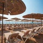 beach (109831505)