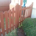 Dog Area - Large Gap Under Fence