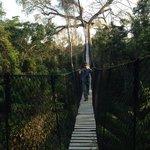 la piattaforma sull'albero vicino all'Estancia