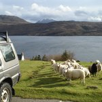 Net boven Ullapool, pal aan de Loch Broom