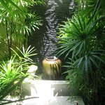 beautiful small garden outside the spa room