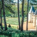 Photo de Jardins et château de La Chatonnière