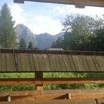 Widok z okna pokoju 104