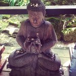 Loved the Buddhas
