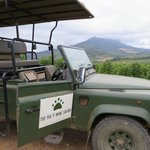 4X4 wine safari