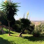 Blick auf den Golfplatz von der Terrasse