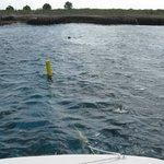 Snorkel buoy off Klein Bonaire