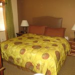 Mastre Bedroom