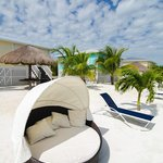 Fabulous Beach Bed sits on the white sandy beach steps from your cottage