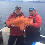 16 lb. Yelloweye Rockfish.
