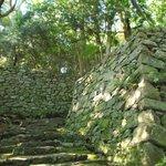 苔むした石段、石垣を登っていく
