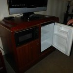 Refrigerator and microwave in special cabinet
