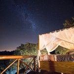 Sleeping under stars Dream Tree House Pezulu Tree House Lodge