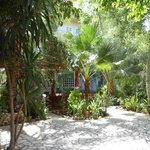 The beautiful tropical garden