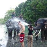 Elephants were a blast