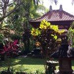 Jardin avec bungalow derrière