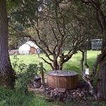 Yurt and Fire Jacuzzi