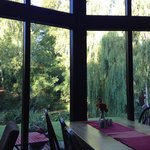 View from dining room to garden