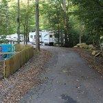 Road to campsite