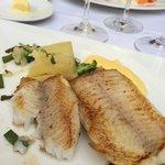 Best of fish