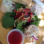 Salad trio - seafood salad, chicken salad, and raspberry blue cheese coleslaw.
