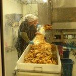 Foto de Covered Bridge Potato Chip Company
