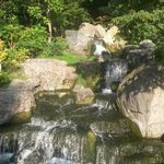 Waterfall in Kyoto Garden
