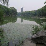 Peking University Main Lake