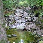 Foto de Lost River Valley Campground