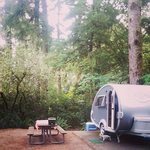 our camp site in Ft Stevens