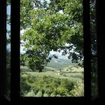 view from  the room to the vale of Orcia