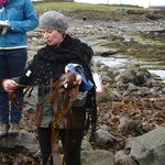 Collecting seaweed with Una