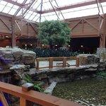 indoor river
