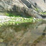 Combe Martin Rock Pools
